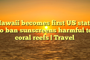 Hawaii becomes first US state to ban sunscreens harmful to coral reefs | Travel