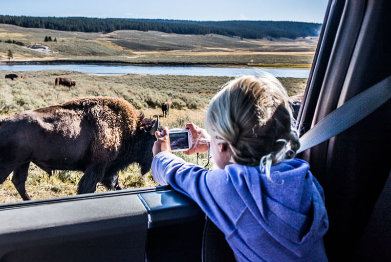 kids camera hayden valley yellowstone np