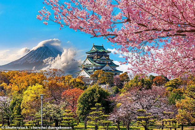 Feeling Japanese? A one way flight to Osaka (pictured) from $249 from Perth, $269 from the Gold Coast, and $279 from Sydney or Melbourne with Scoot