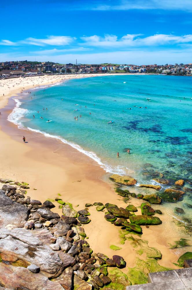 Visit Bondi Beach, Sydney's most famous beach