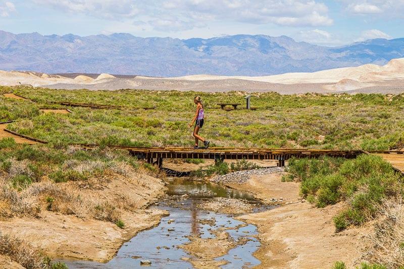 Salt Creek Trail Death Valley