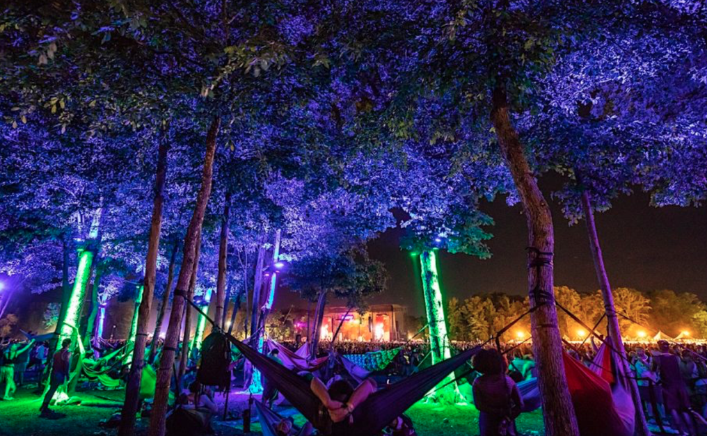 12 American Music Festivals to Check Out this Summer Besides Coachella - 14