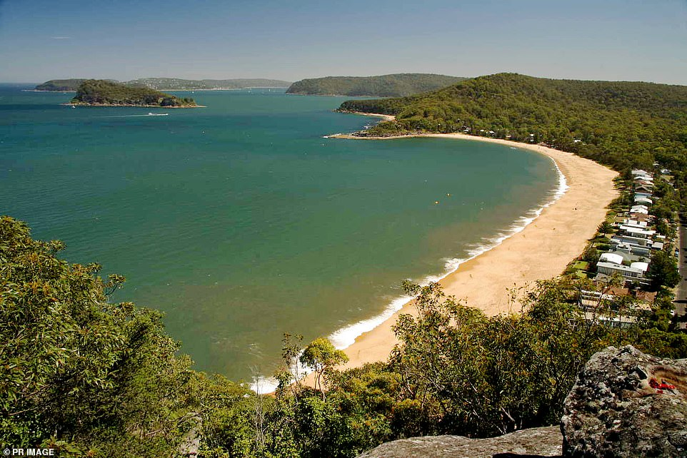 City-dwellers could be inspired to sell their slick CBD pads and head to suburbs with far more space and sunshine now that they can work from home, experts said (pictured, Pearl Beach near Gosford, 90km north of Sydney)