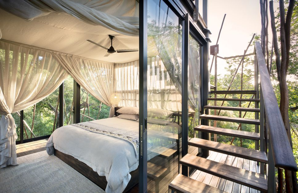 Experience Wildlife and Starry Skies in this South African Ngala Treehouse - 8