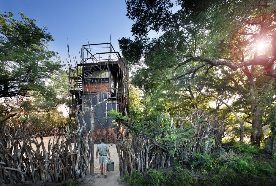 Experience Wildlife and Starry Skies in this South African Ngala Treehouse