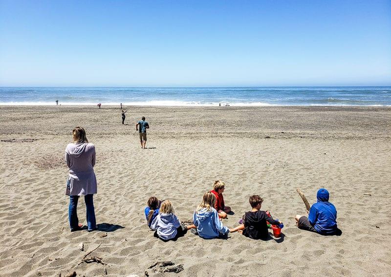 Ferndale Beach, California