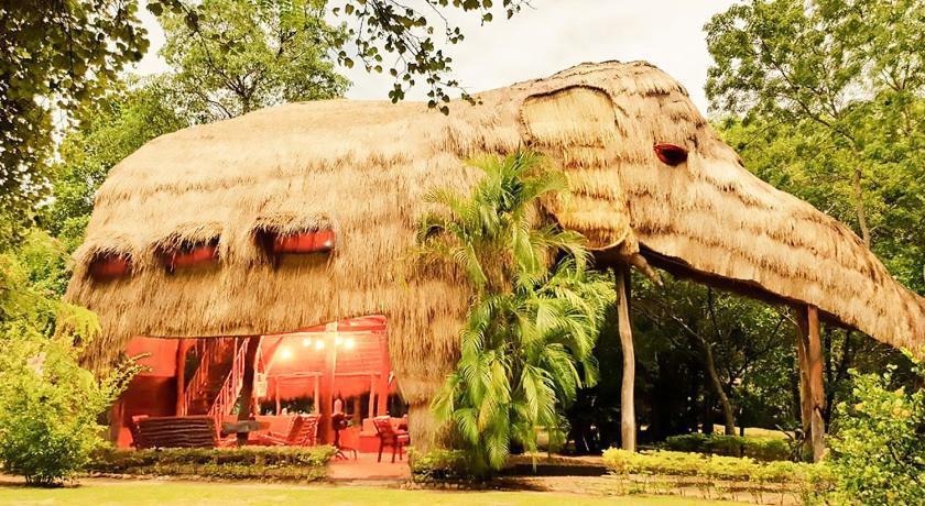 Stay in a 40-Foot Tall Elephant Villa in Sri Lanka! - 11