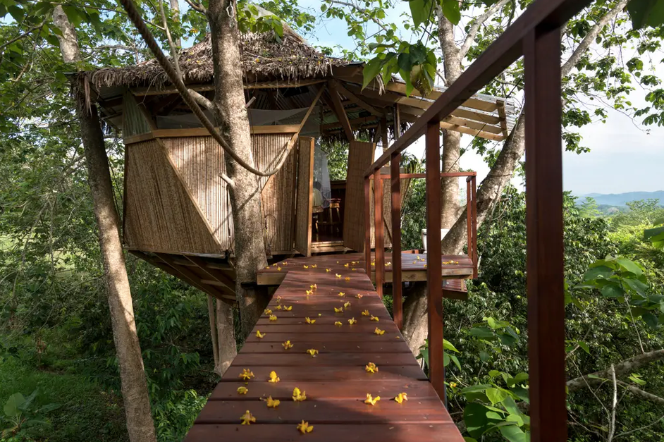 Rainforest Treehouse in Costa Rica from $49 a Night! - 4