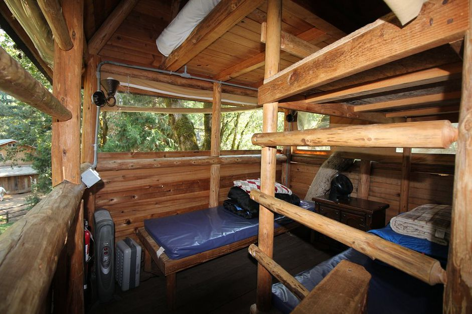 Glamping in the Trees—Out 'n' About Treesort in Oregon from $50! - 2