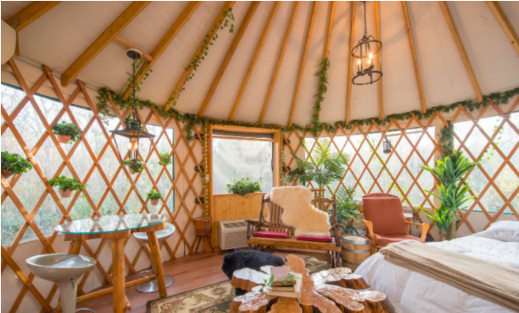 Adults-Only Treehouse in Florida from $90 Per Person—Spring & Summer 2021! - 6