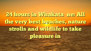 24 hours in Whakata ̄ne: All the very best beaches, nature strolls and wildlife to take pleasure in