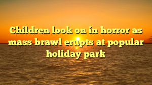 Children look on in horror as mass brawl erupts at popular holiday park