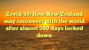 Covid-19: How New Zealand may reconnect with the world after almost 500 days locked down